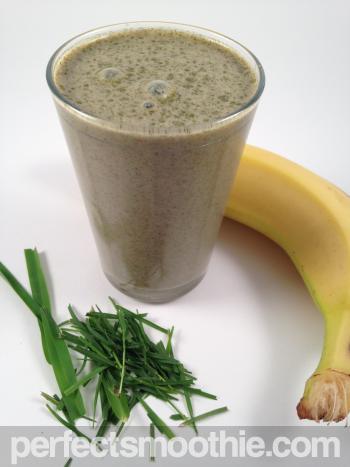 Basic Protein Smoothie Recipe