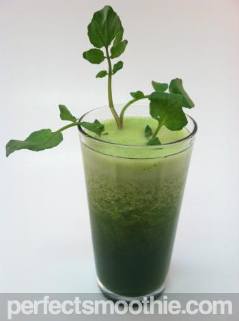 Green Tea Weight Loss Smoothie Recipe